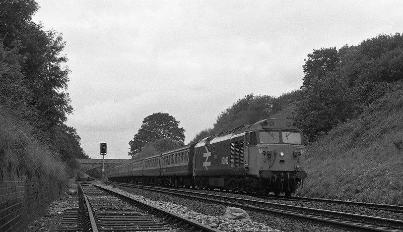 50033, 12.48 Paignton-London Paddington, Whiteball Tunnel, 30-8-86 (late).