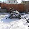snow pics 1-19-110013