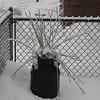 snow pics 1-19-110006