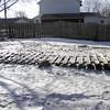 snow pics 1-19-110015