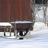 snow 1-30-090006