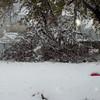 snow storm 10-28-080003