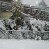 snow storm 10-28-080005