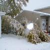 snow storm 10-28-080010