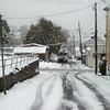 snow storm 10-28-080012