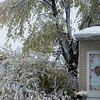 snow storm 10-28-080011