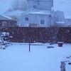snow 1-18-140002
