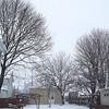 snow 2-3-140003