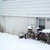 snow 2-3-140001