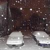 snow 1-3-140009