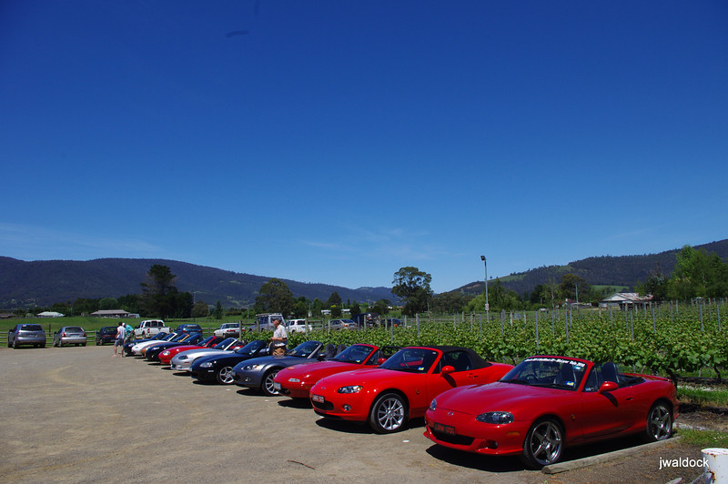 What vivid colours! A magnificent Southern Tassie summer's day at Home Hill winery, Huonville
