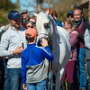 Arabians Int  Open House-131