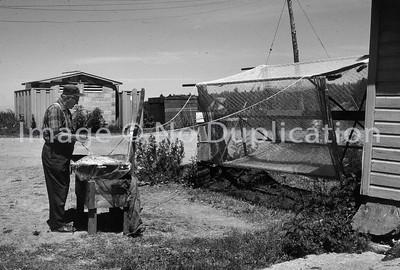 CORNUCOPIA, WI, July 1977