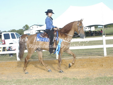 CLASS 18  LITE SHOD WESTERN SPECIALTY