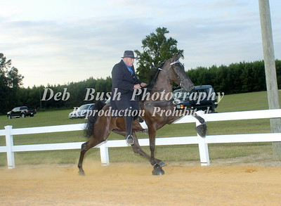 CLASS 26  WALKING HORSE PRO-AM SPECIALTY
