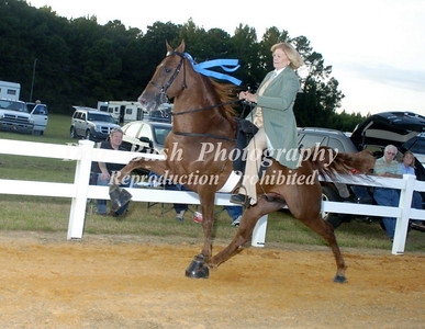 CLASS 27  WALKING PONY AMATEUR SPECIALTY