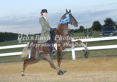 CLASS 29  TWO YEAR OLD AMATEUR SPECIALTY