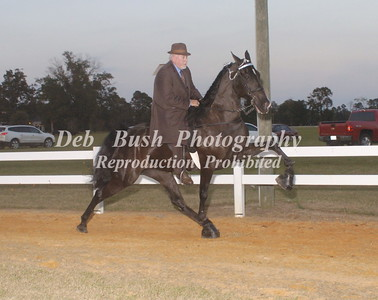 CLASS 31  AMATEUR RIDER 50 YRS AND OLDER SPECIALTY
