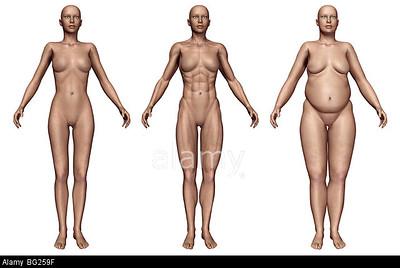 Human body types: Ectomorph, Endomorph or Mesomorph