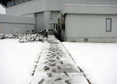 Snow in Louisiana - Dec 2008
