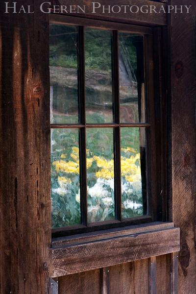 Window<br /> Daffodil Hill, California<br /> 0904D-W2
