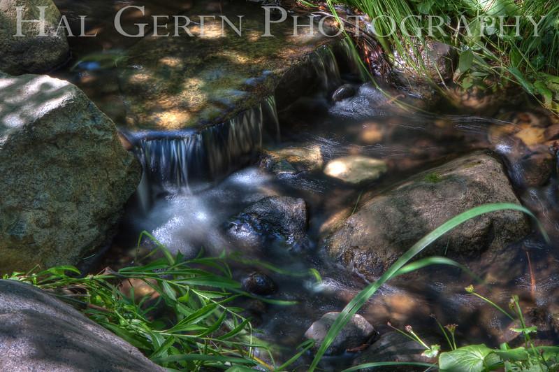 Pond Stream<br /> Big Springs Resort<br /> Sierra City, California<br /> 0908BS-W3HD1
