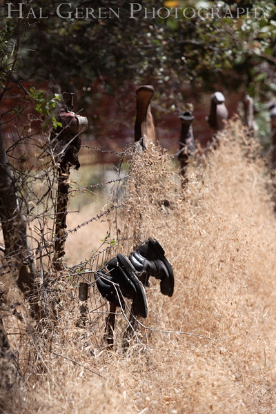 Mokolumne Hill Boot Fence; a boot on every fence post for hundreds of yards<br /> Mokolumne Hill, California<br /> 0908BS-OBF1
