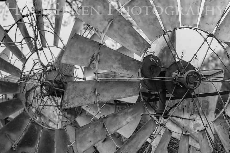 Windmills<br /> 1303W-W2BW1