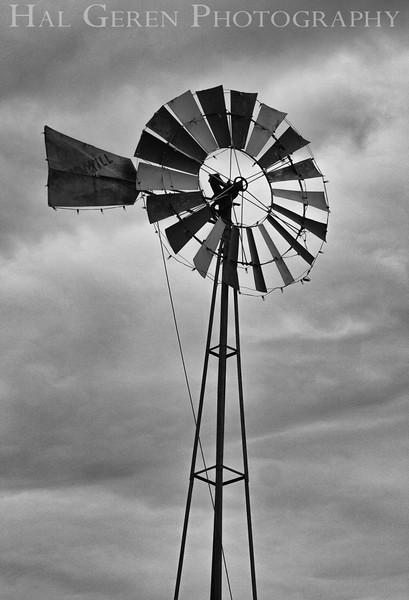 Windmills<br /> 1303W-W1BW2