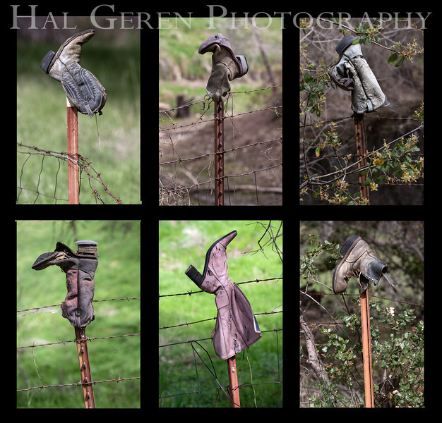 Boots on Fenceposts - a western ranching tradition<br /> Moloumne Hill, California<br /> 1303W-BL1
