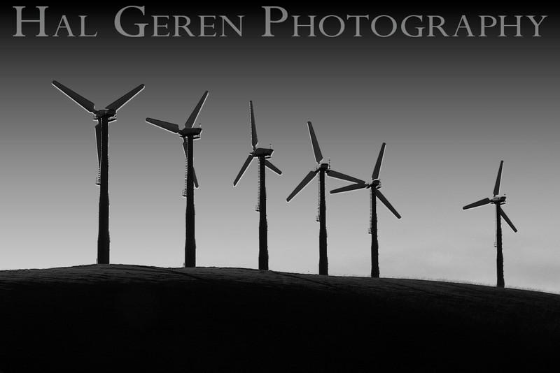 Windmills<br /> Altamont Pass, California<br /> March, 2009<br /> 0903W-W4E2