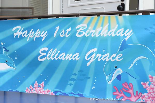 Elliana's 1st Birthday Bash