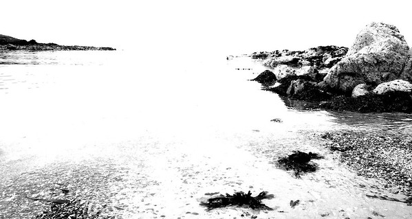 Coastal B&W