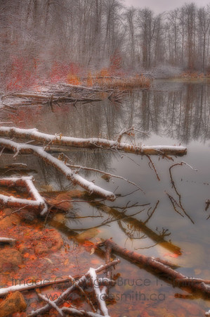 Late Autumn Pond and Snow