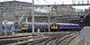 365534 & 317345 Driver John Webb , King's Cross, Wed 2 February 2011 - 1009   First Capital Connect's Networker departs (behind 365518 The Fenman) as the 317 arrives.