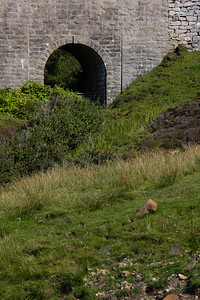 Bridge in Elgol