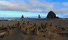Cannon Beach Stacks