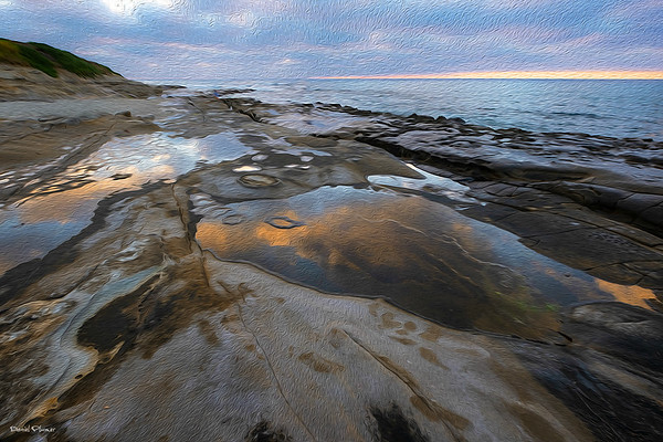 Coastal Tide Pools