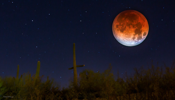 Blue Blood Red Lunar Eclipse