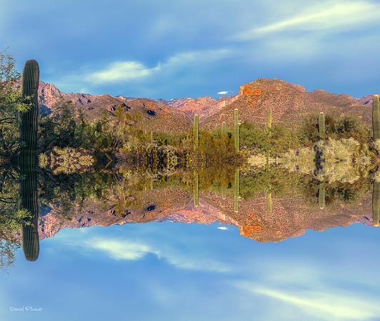 Sabino Lake