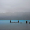 NZ 10  Misty and Moody