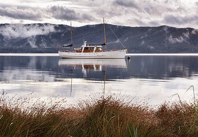 NZ 53 Faith on Te Anau