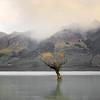 NZ 07 Misty Sunset