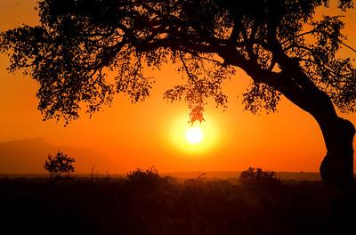 TNP 07 Sunset at Thornhill Safari Lodge
