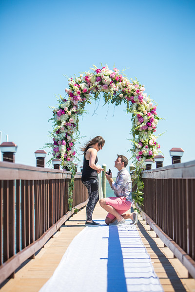 DiDonna Surprise Engagement 2016-06-12