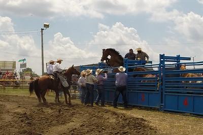 DuPage County Fair - July 22-26, 2015 - Wheaton, Illinois - Latting IPRA Rodeo