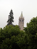 "May 23 - first stop: UC Berkeley, with its <A HREF=""http://berkeley.edu/visitors/campanile.html"">Capanilie</A>"