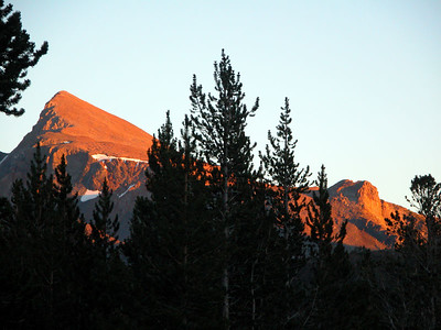 Evening sunset on Mt Dana from Sawmill Campground