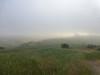 it's foggy but nice