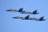 Blue Angels (4)